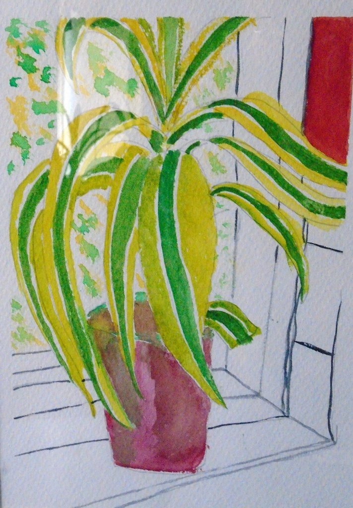 Plant 1 watercolour 30x40 SOLD